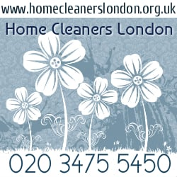 Home Cleaners London, London