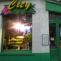 City Plantes, Lille