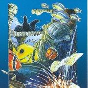 La brochure de sealand