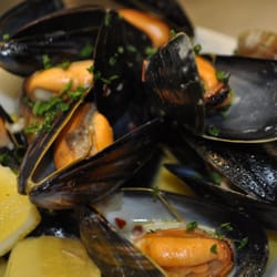 MSC fresh mussels