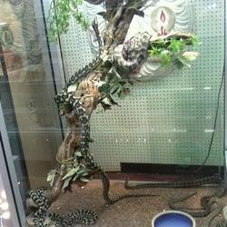 Bangkok Aquarium Pet Supply Closed Pet Shops