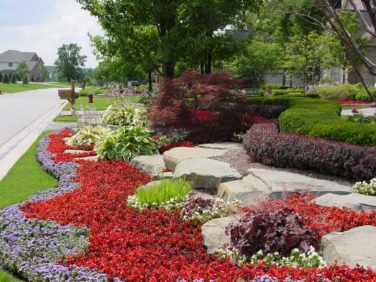 landscaping joy studio - photo #38