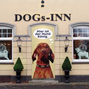 DOGs Inn - Hundeshop Essen, Essen, Nordrhein-Westfalen, Germany