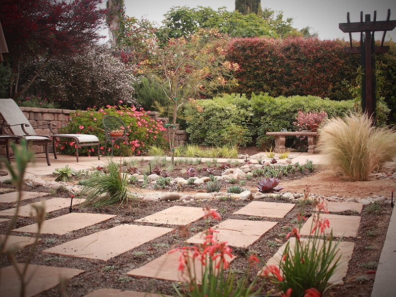Modern Landscaping With Succulents : Modern flagstone patio with succulents and perennials yelp