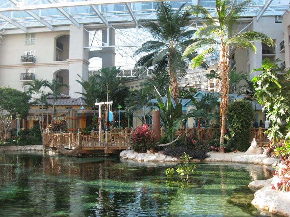 photos for sunset sam 39 s fish camp at gaylord palms resort