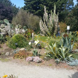 Mendocino Coast Botanical Gardens Fort Bragg Ca United States Desert Area In The Gardens