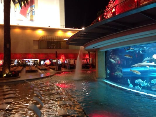 Golden nugget pool 77 photos swimming pools downtown for Pool show las vegas november