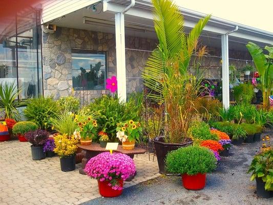 Lehigh Valley Home Garden Center Allentown Pa United