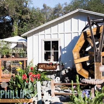 Myrtle Creek Botanical Gardens Nursery 210 Photos Gardening Centres 2940 Reche Rd