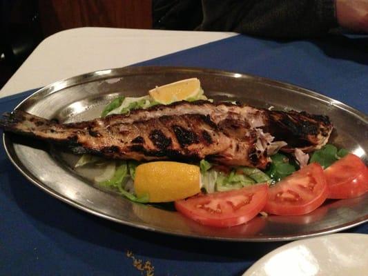 Athena restaurant glenside pa yelp for Athena mediterranean cuisine