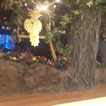 Rainforest Cafe Gurnee Mills