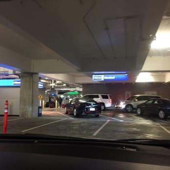 Alamo Car Rental Sea Tac Airport