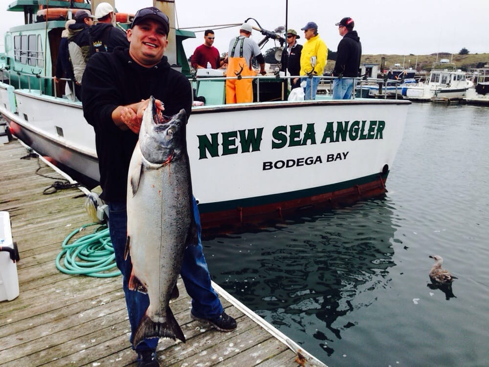 Bodega bay sport fishing center boating bodega bay ca for Bodega bay fishing charters