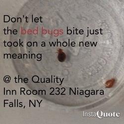 quality inn hotels niagara falls ny reviews. Black Bedroom Furniture Sets. Home Design Ideas