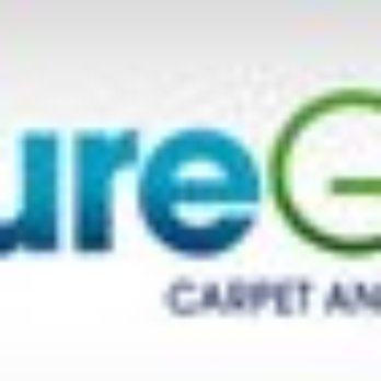 Puregreen Carpet Amp Upholstery Cleaning Flatiron New