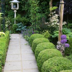 Silver Leaf Garden Services, Guildford, Surrey