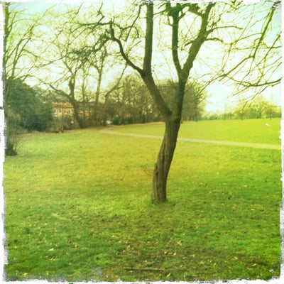Avery Hill Park, London