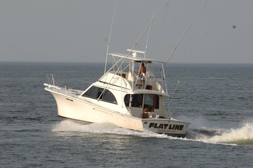 Aquaman sportfishing charters tours virginia beach va for Virginia beach fishing charters
