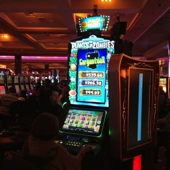 Hardrock casino players club citizens against gambling expansion