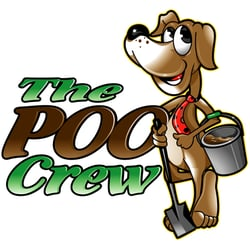 How To Find A Reputable Pet Waste Cleanup Company On