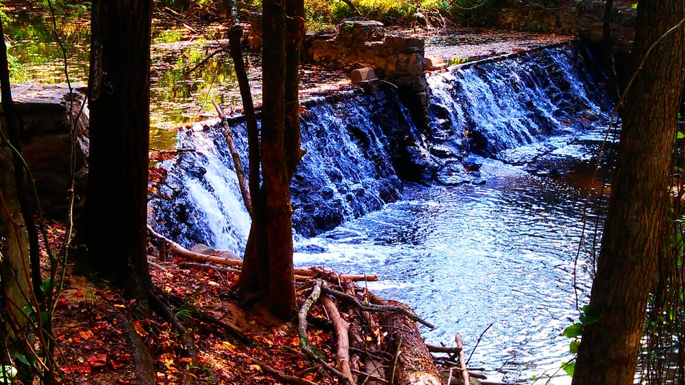 Lullwater park 102 photos parks 1463 clifton rd ne for Lull water