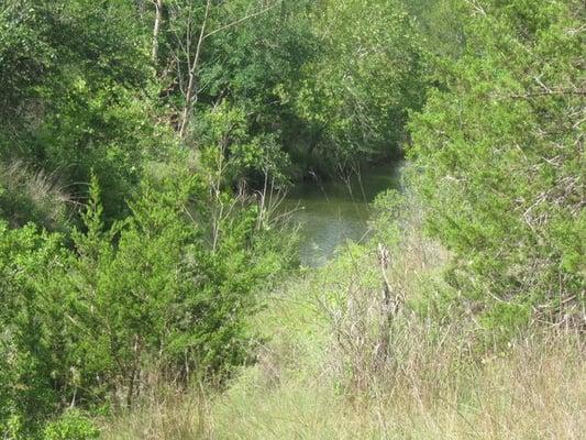barton creek habitat preserve westlake hills austin. Black Bedroom Furniture Sets. Home Design Ideas