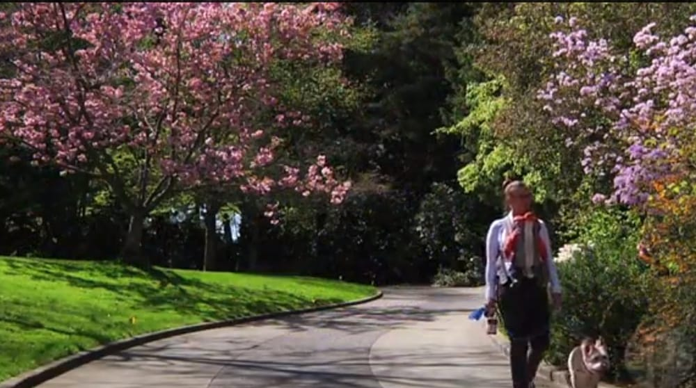 Springtime Stroll In Carl S English Jr Garden Yelp