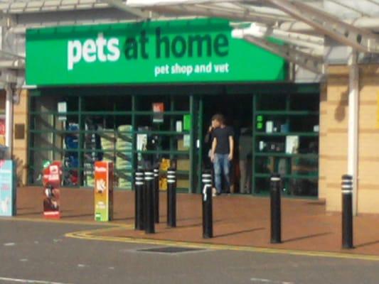 pets at home   cardiff united kingdom yelp