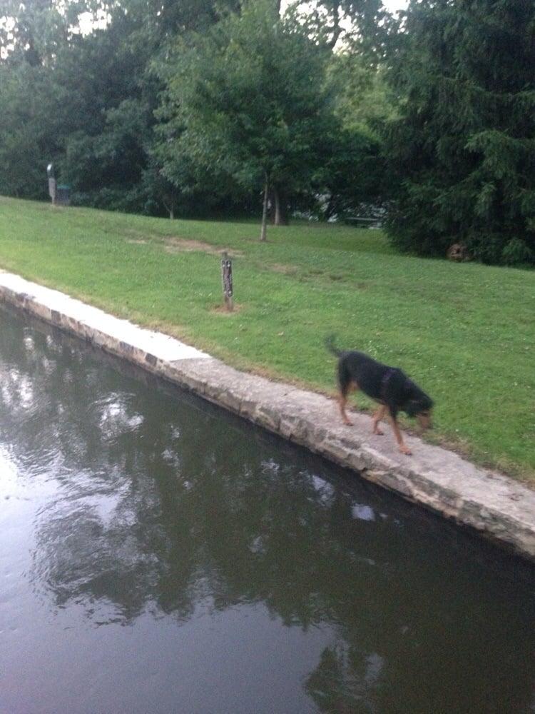 Brandywine Dog Park Wilmington De