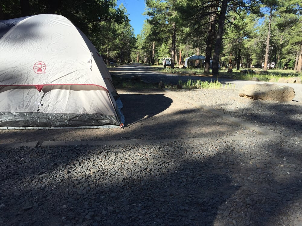 Dogtown lake campground campgrounds williams az for Fishing in williams az