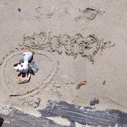 Willard Beach City of ...