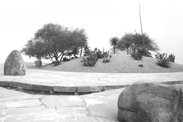 California Scenario The Noguchi Garden Parks Costa
