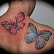 Schmetterling Tattoo, Independent Color…