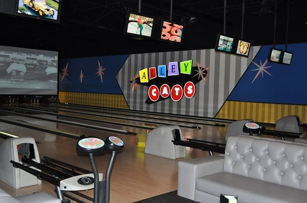 alley cats bowling alley arlington tx