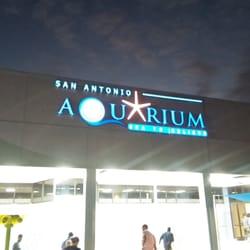 San Antonio Aquarium 142 Photos Aquariums San