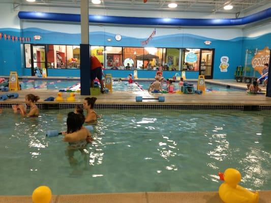Goldfish Swim School Birmingham Swimming Lessons