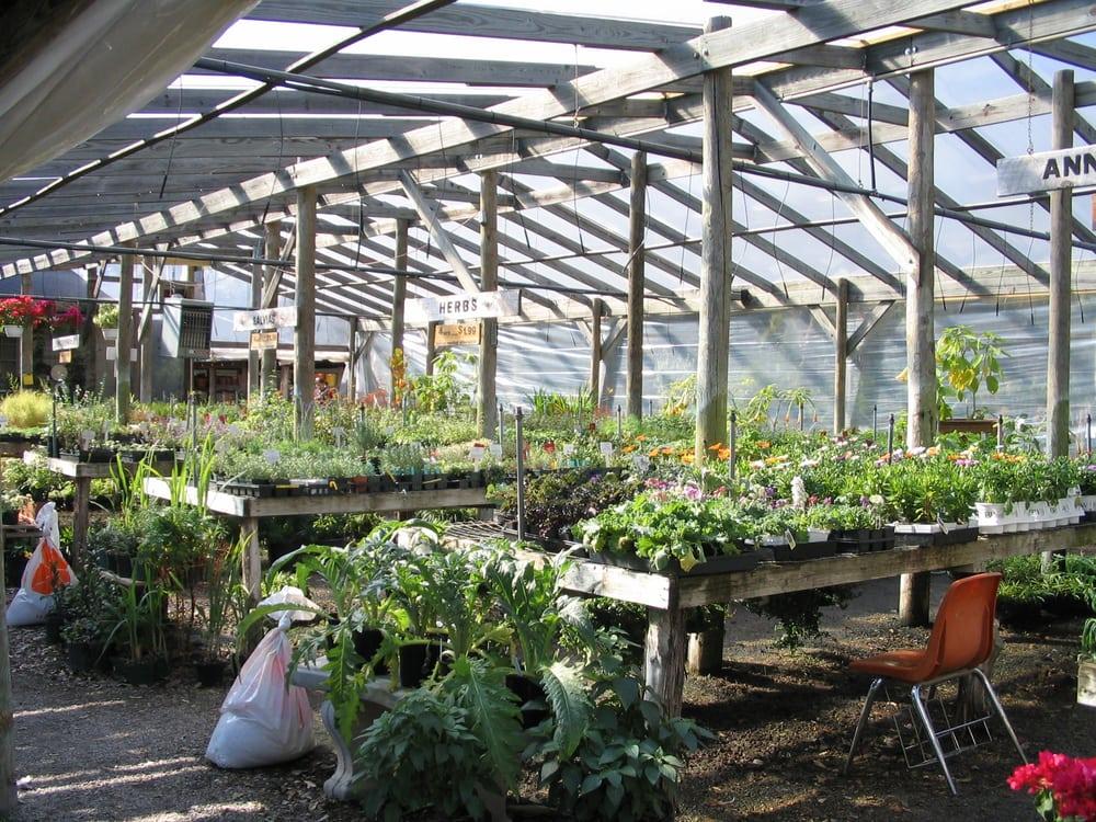 Barton Springs Nursery 52 Photos Garden Centres Westlake Hills Austin Tx United States