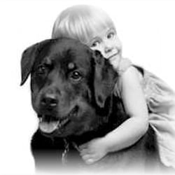 Sunnyside Pet Healthcare Center - Sunnyside, NY, États-Unis. Ya gotta love'em...