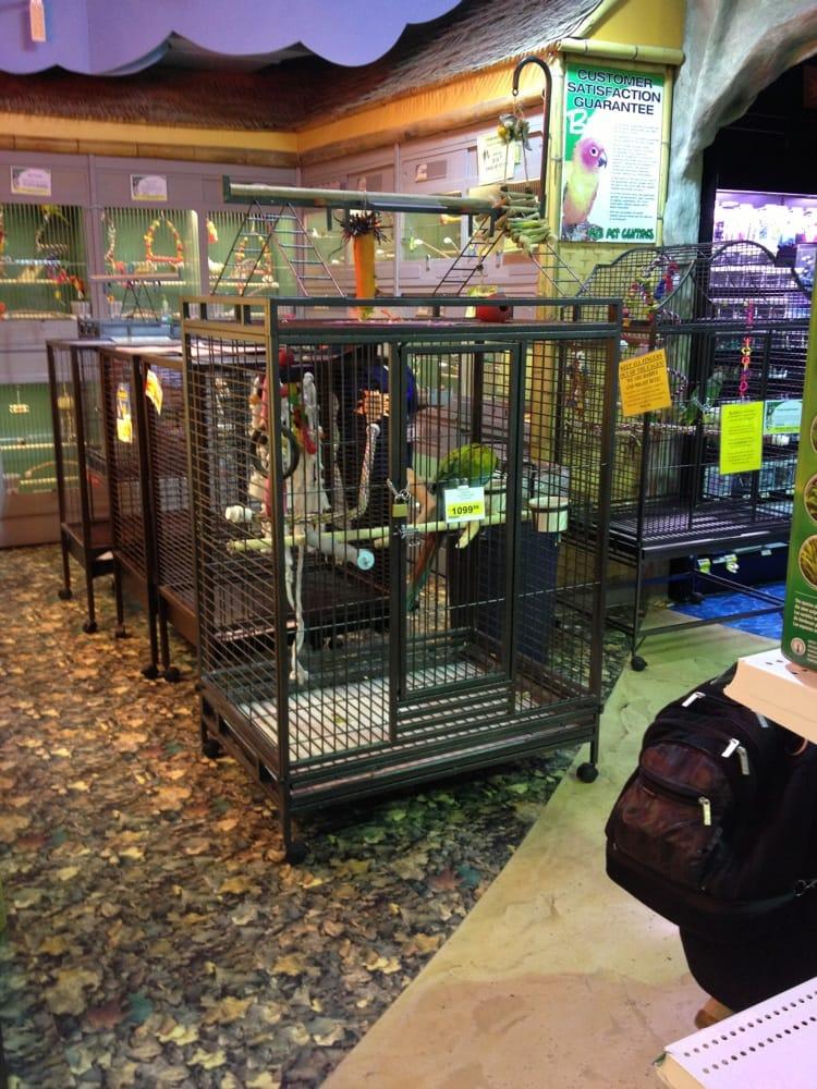 pj s petshop ferm magasin pour animaux de compagnie etobicoke etobicoke on canada. Black Bedroom Furniture Sets. Home Design Ideas