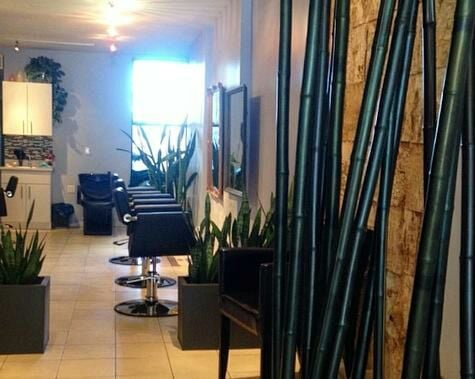 Brooklyn spa salon hair salon brooklyn beauty salon zade for 24 hour nail salon brooklyn