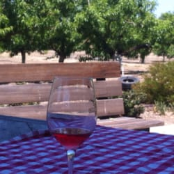 Buttonwood Farm Winery & Vineyard - Lunch with the Buttonwood Rose and Tri tip sandwiches - Solvang, CA, Vereinigte Staaten