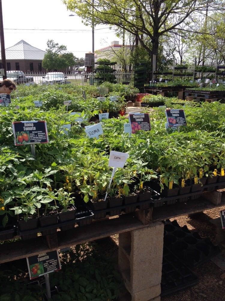 Red Barn Garden Center Nurseries Gardening Austin Tx United States Yelp