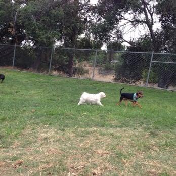 Dog Friendly Parks In Pasadena Ca