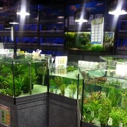Aquariumabteilung