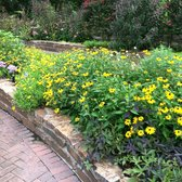 Mercer Arboretum And Botanic Gardens 129 Photos 36