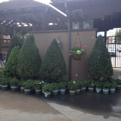 Roger 39 S Gardens Corona Del Mar Ca United States A Good Selection Of Topiaries