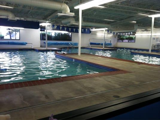 Happy fish swim school swimming lessons schools for Happy fish swimming