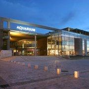 Aquarium la…