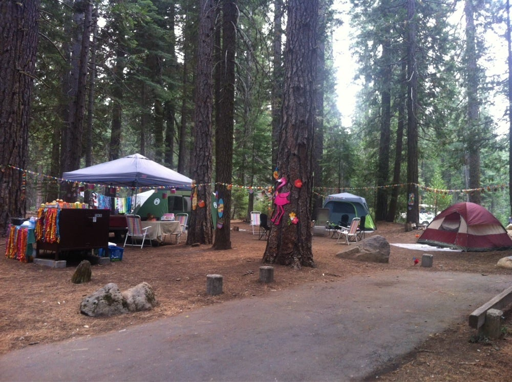 Meadowview Campground - Campgrounds - Dodge Ridge Rd - Pinecrest, CA - Reviews - Photos - Yelp
