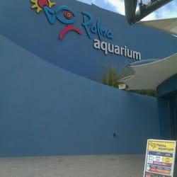Palma Aquarium, Palma de Mallorca, Balears, Spain